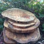 Rustic Wood Slice Chargers